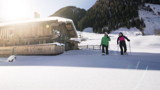 zillertal winter schneeschuh35